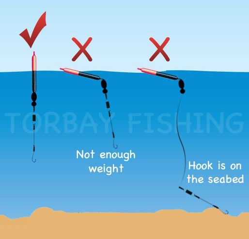 How Your Float Should Look In The Water Fishing Stuff