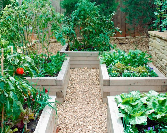 Building Raised Beds and Crop Rotation / Design   Fiskars from ...