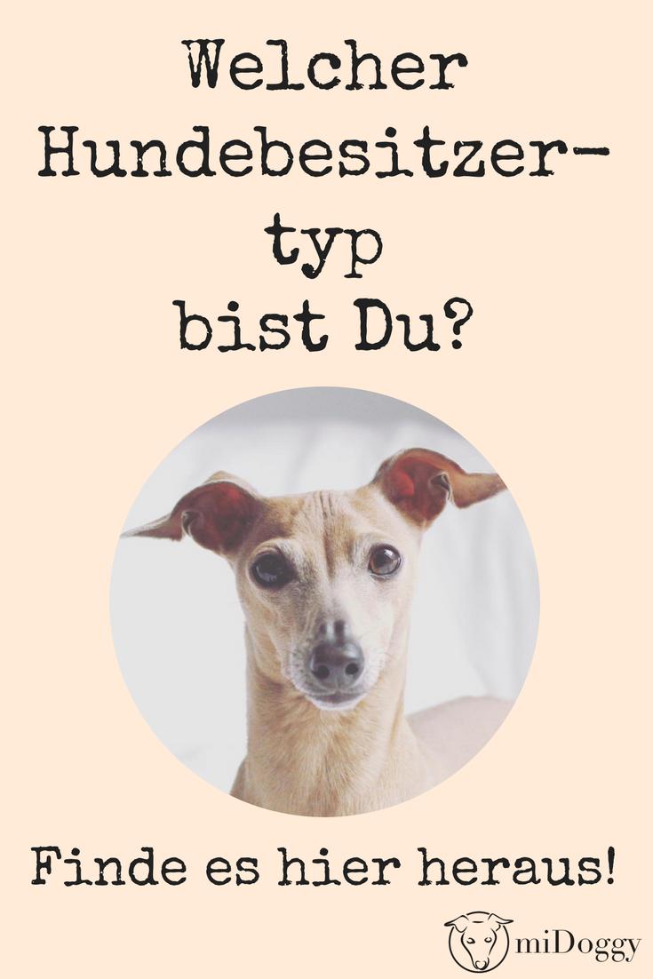 Na Wer Bist Du Denn Auf Zur Hundebesitzer Bestimmung Hunde