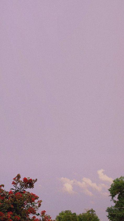 핸드폰 배경화면 초고화질 다운로드 20 #텀블러 #색감 #필카 #color #background #tumblr