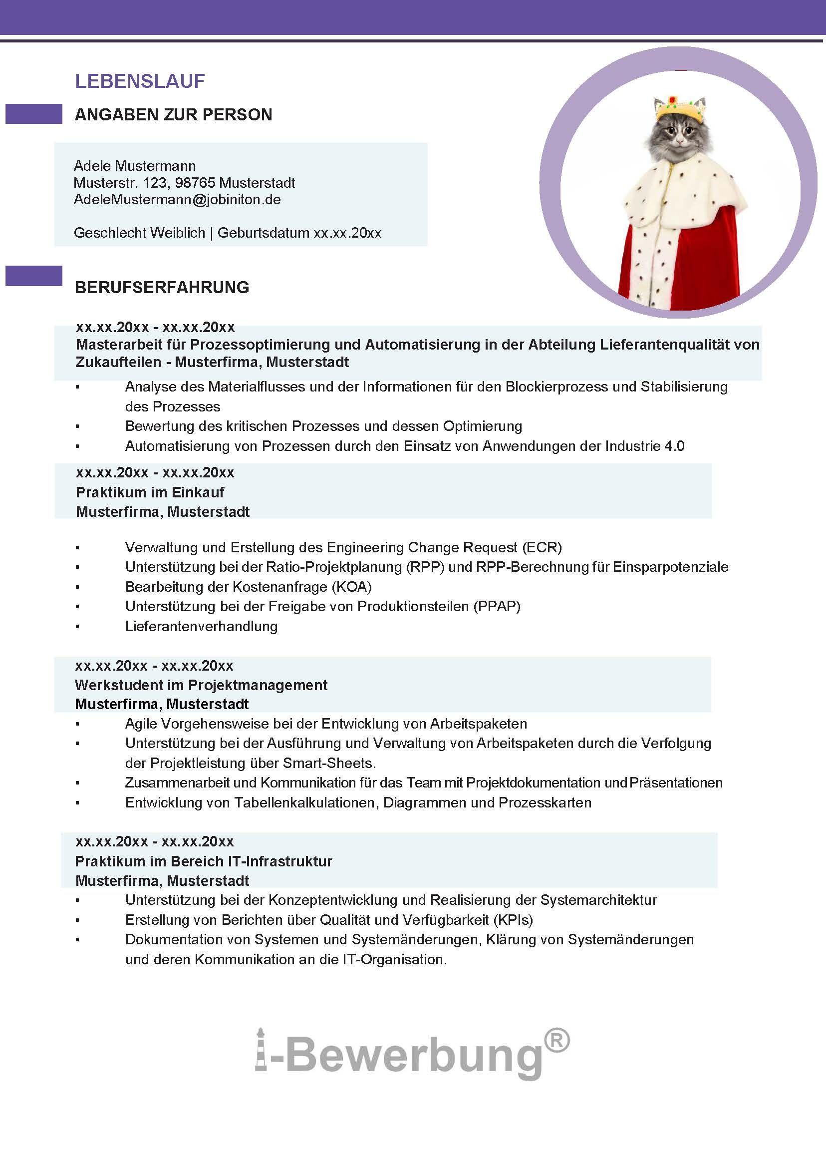 Gestaltung Des Lebenslauf Cv Zur Bewerbung Muster 602 Lebenslauf Lebenslauf Beispiele Lebenslauf Bewerbung Muster