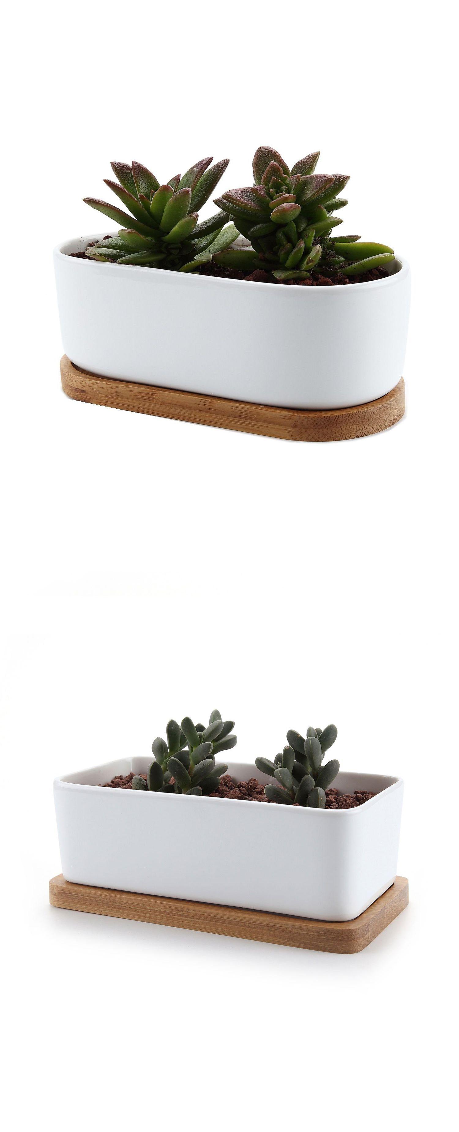 19.93 Inch Ceramic White Mini Square succulent Plant