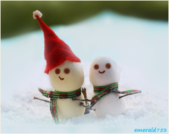 Cute Christmas Snow Man Photography