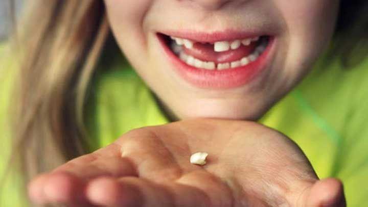 La vida está llena de momentos muy sencillos y cotidianos, pero cargados de gran valor sentimental. Eso es lo que hace que vivir valga la pena y nos da animo de seguir luchando por gozarla. Uno de esos momentos es el día en que nuestros hijos pierden su primer diente.Verlos ...