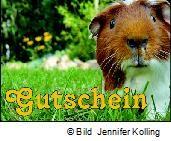 http://haben-sie-das-gewusst.blogspot.com/2012/08/gutschein-shopping-trendbewusstes.html
