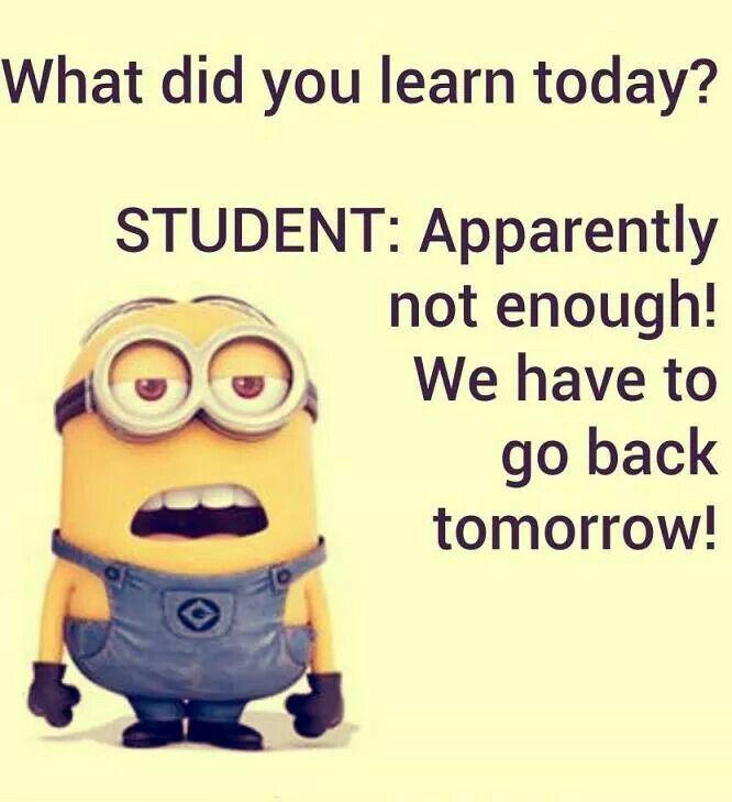 Kids School Funny Minion Quotes Minion Jokes Funny Minion Memes