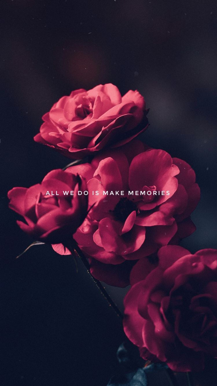 All We Do Is Make Memories Flower Wallpaper Flower Backgrounds Red Flowers