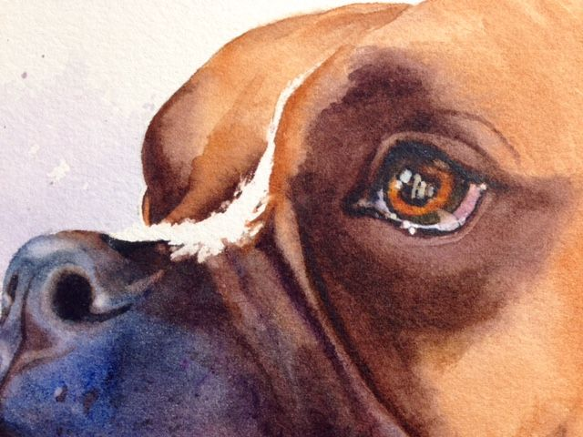 Paint Your Pup Create Artistic Watercolor Pet Portraits Pet