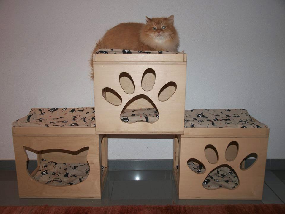 Il bellissimo lukijn sui nuovi cubi da appoggio for Cubi in legno arredamento