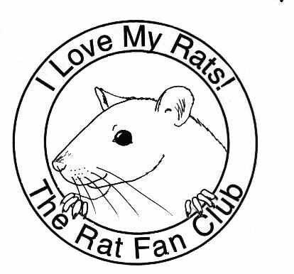 Pin By Isabel Senske On Rats