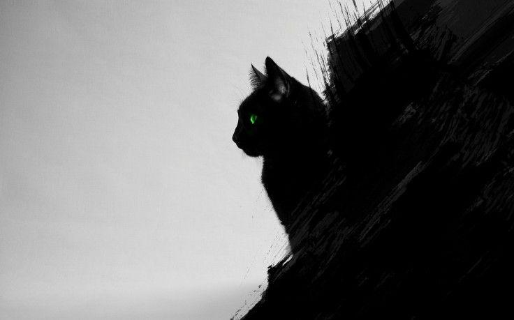 Cat Black Cats Animals Green Eyes Artwork Digital Art Black Gray Wallpapers Hd Eyes Artwork Cat Dark Black Cat