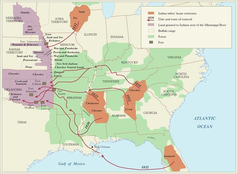 history the indian removal act essay Indian removal act the indian problem in the beginning, native peoples occupied the lands that would one day become the.