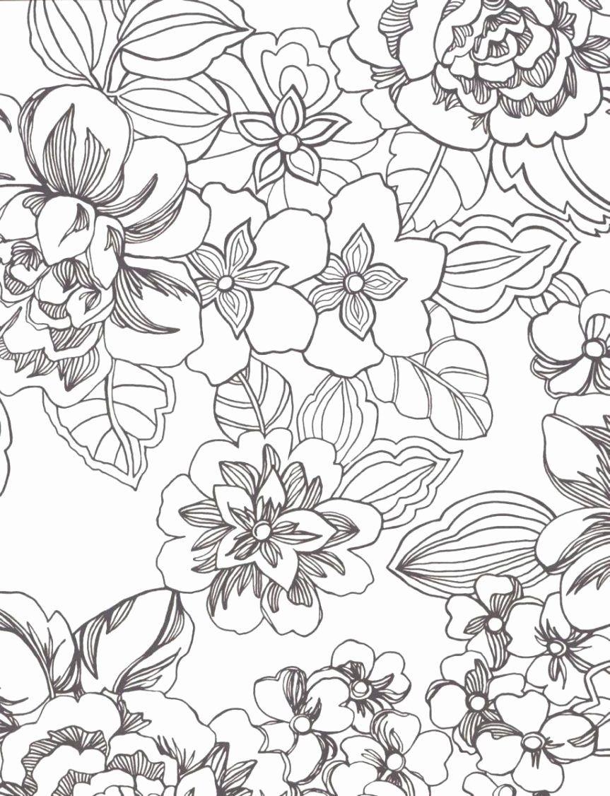 Hawaiian Flower Coloring Page Luxury Impeccable Tropical Flower