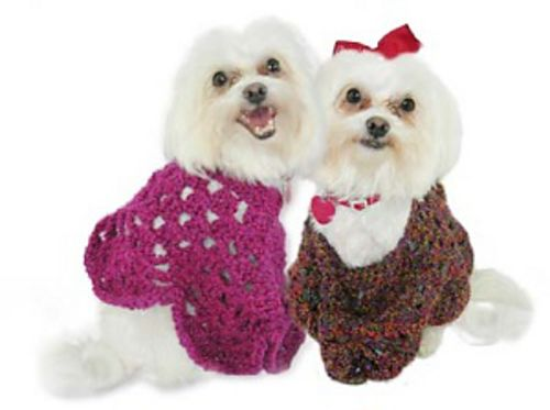 Martha Stewart Coming Home Pooch Poncho Crochet Pattern By Lion