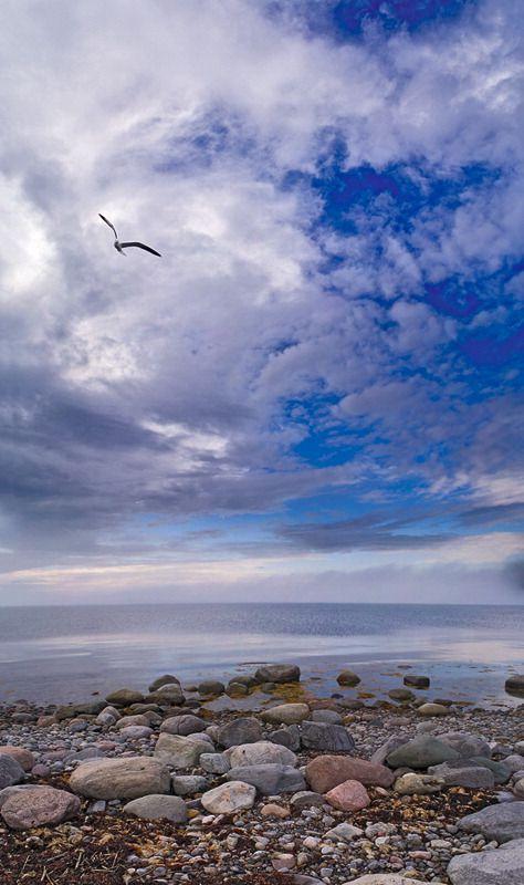 White Sea panorama(from series SOLOVKI)