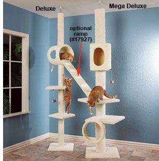 Cat Climbing Structures On Pinterest Cat Furniture Cat