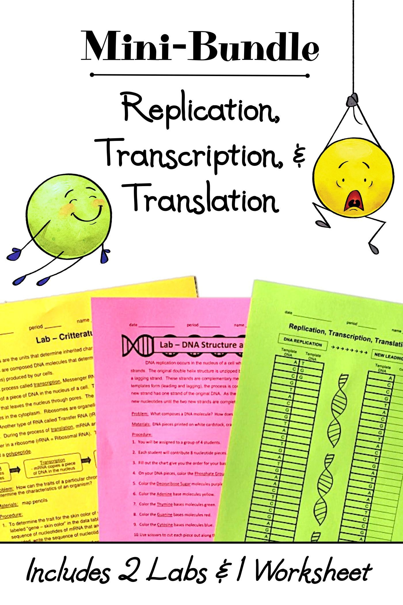 Replication Transcription And Translation Mini Bundle Activities Worksheet Transcription And Translation Dna Transcription And Translation Dna Transcription