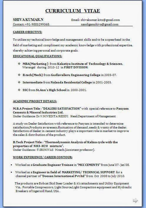 Curriculum Vitae Personal Statement Sample Template Example