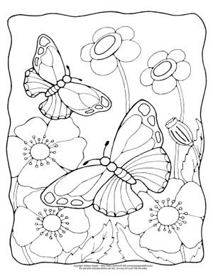 butterfly coloring pages  free printable  from cute to realistic butterflies  easy peasy and