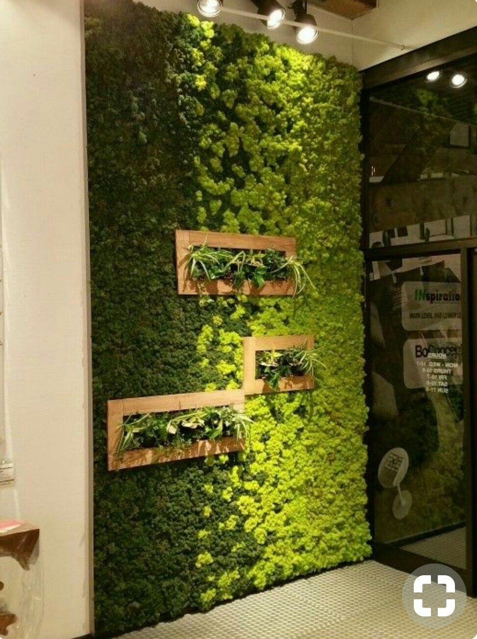 Pin by Emerald on Home Decor Garden ideas diy cheap