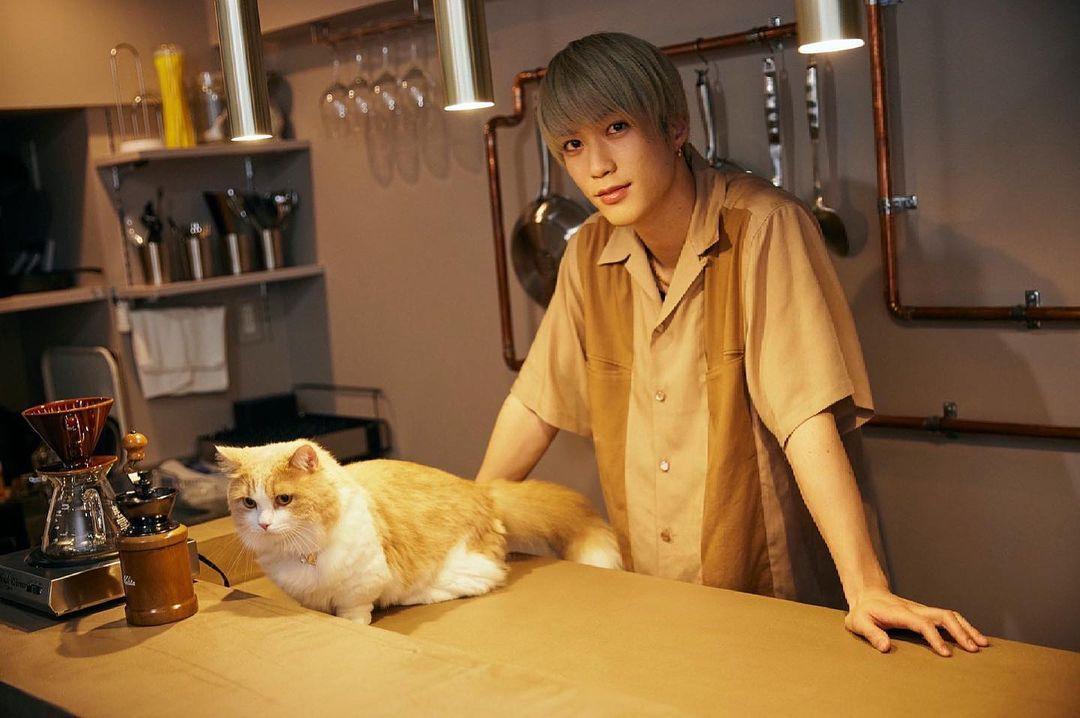 マース 藤原 樹 藤原樹の愛猫の名前はマース!猫の種類や名前の由来・性別・実家の猫もまとめてみた