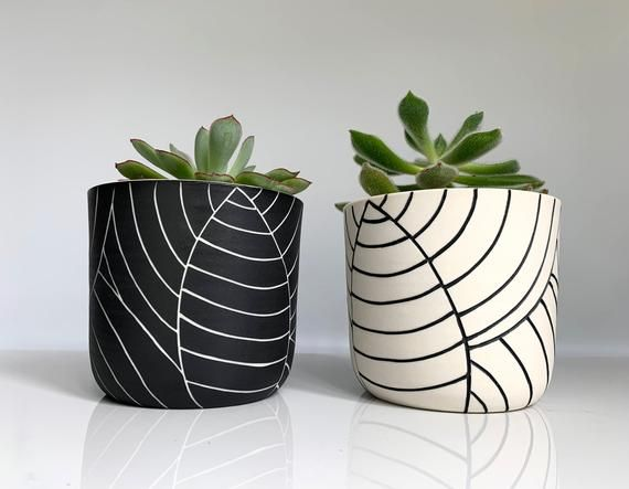 Photo of READY TO SHIP – Carved leaf ceramic succulent planters – plant themed succulent planters – modern ceramics – minimalist pottery