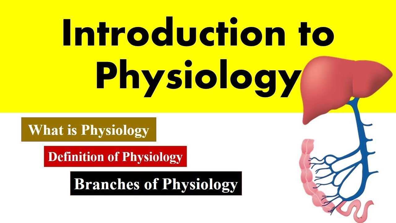 Introduction To Human Physiology Definition And Branches Of Physiology Physiology Anatomy And Physiology Introduction