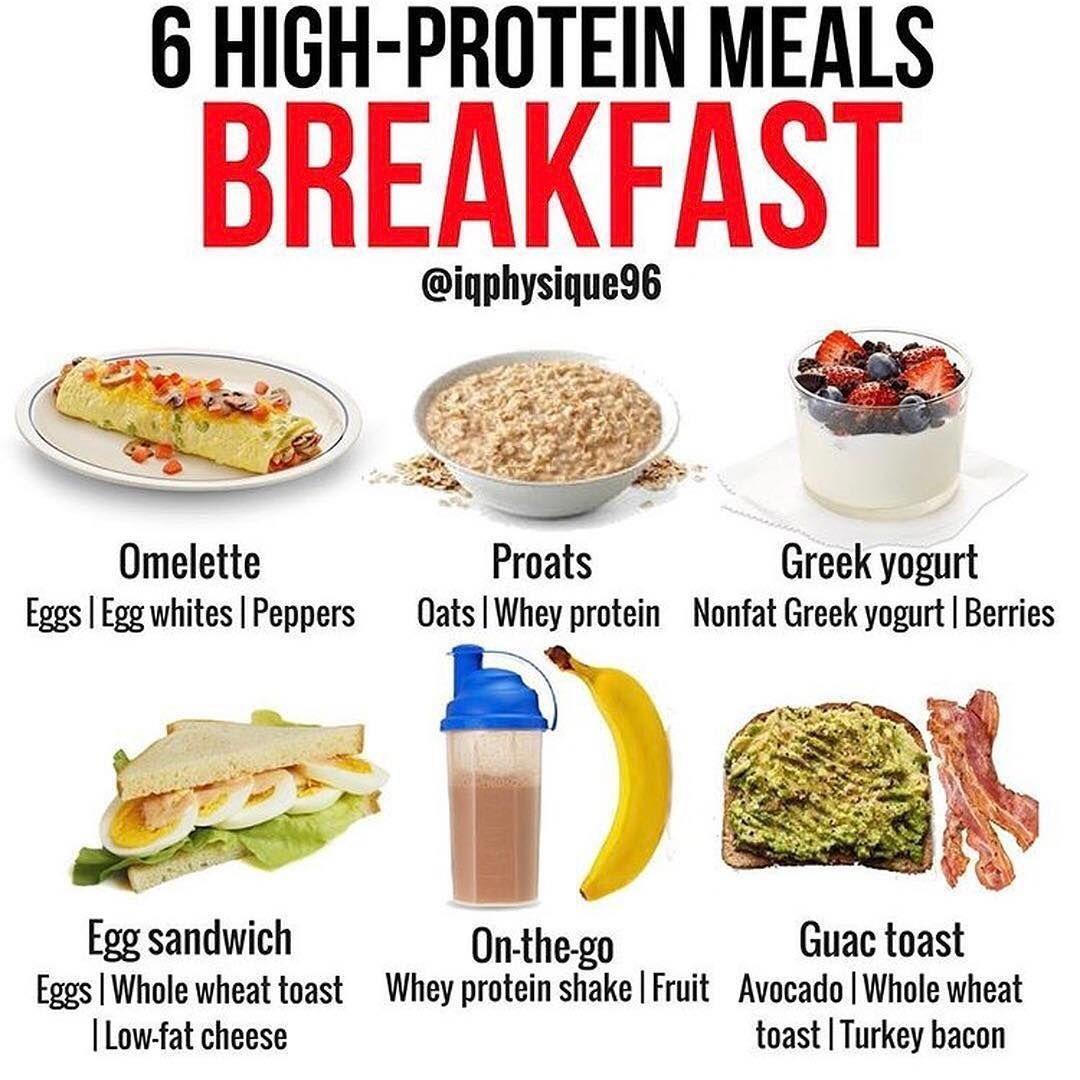 holistic protein recept
