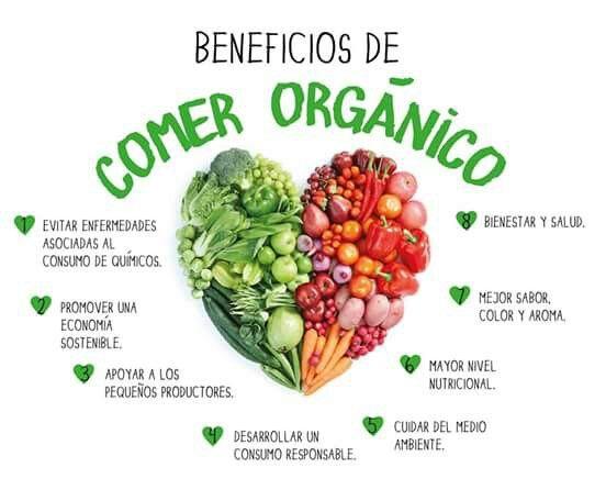 Comer Organico Healthy Healthy Treats Healthy Quotes