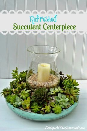 Refreshed Succulent Centerpiece, For Outside  Use The Glass From An Old  Light Fixture