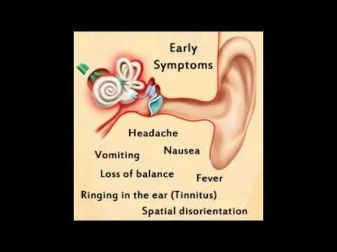 Inner Ear Infection Symptoms Ear Infection Symptoms Dizziness Inner Ear Infection Symptoms