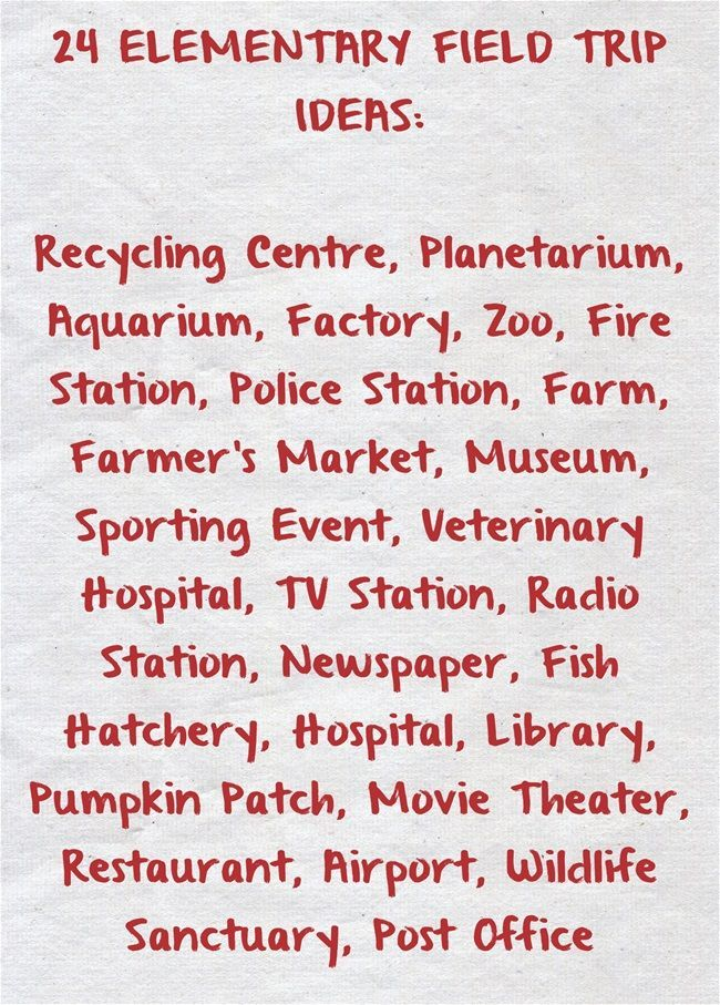 Photo of Here Is a List of Field Trip Ideas for Elementary School Students