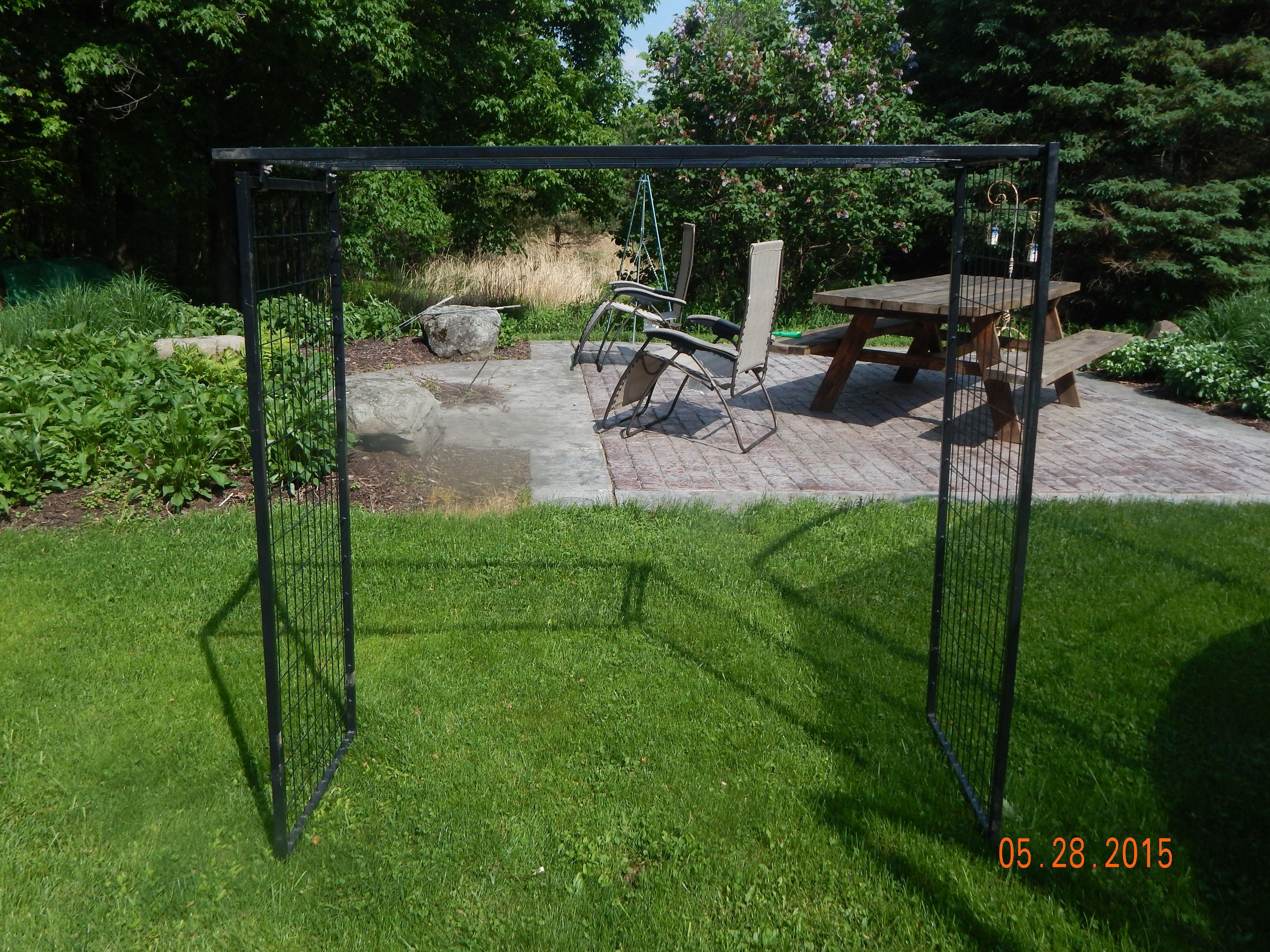 dog kennel panels turned trellis garden ideas pinterest dog