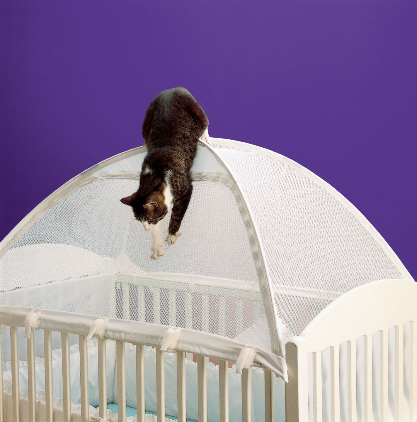 Crib tents are a solution to keeping cats out of baby beds | Exclusively Cats Veterinary & Crib tents are a solution to keeping cats out of baby beds ...