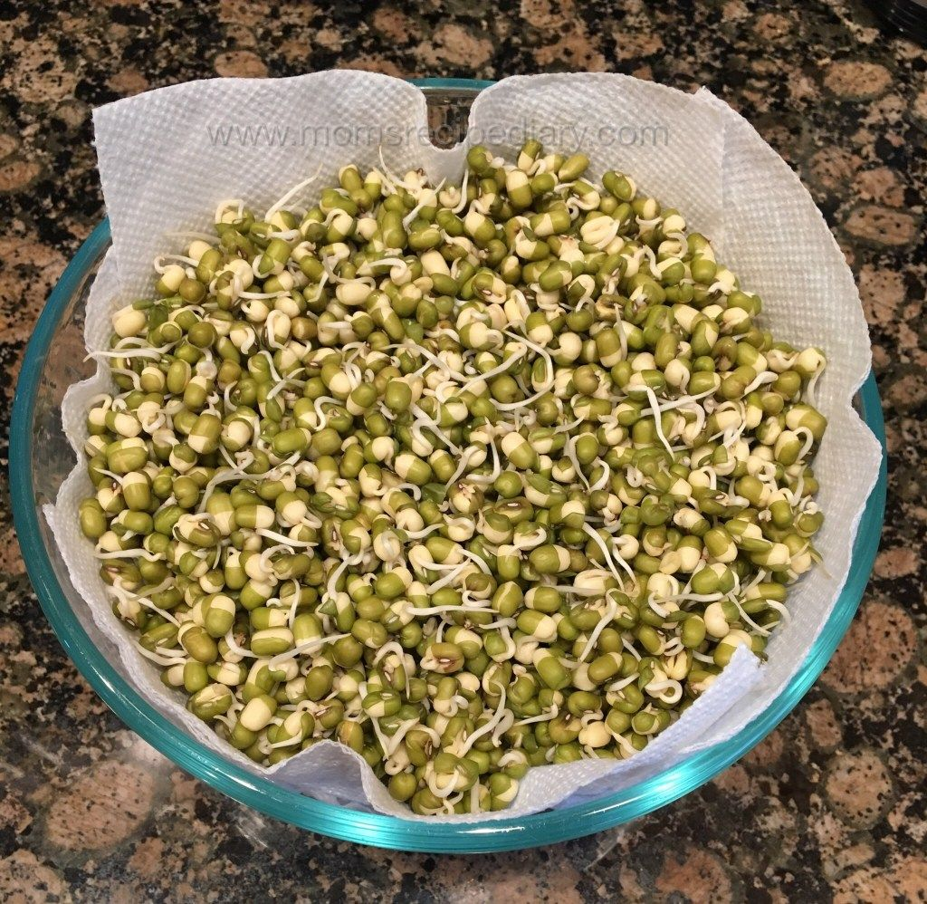 How to sprout beans instant pot method with images