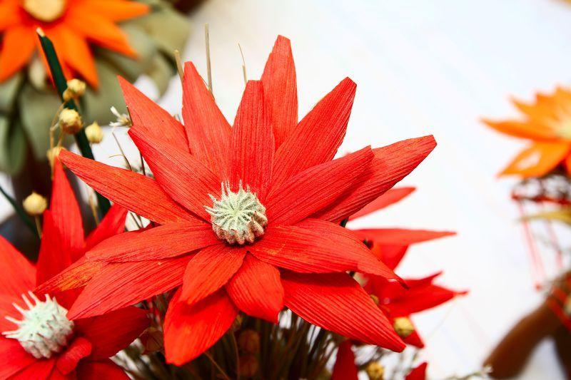 Walentynki Juz Jutro A Ty Nadal Nie Masz Prezentu Dla Ukochanej Osoby Wiecej Na Naszym Blogu Http Www Promocyjni P Flower Arrangements Flowers Arrangement