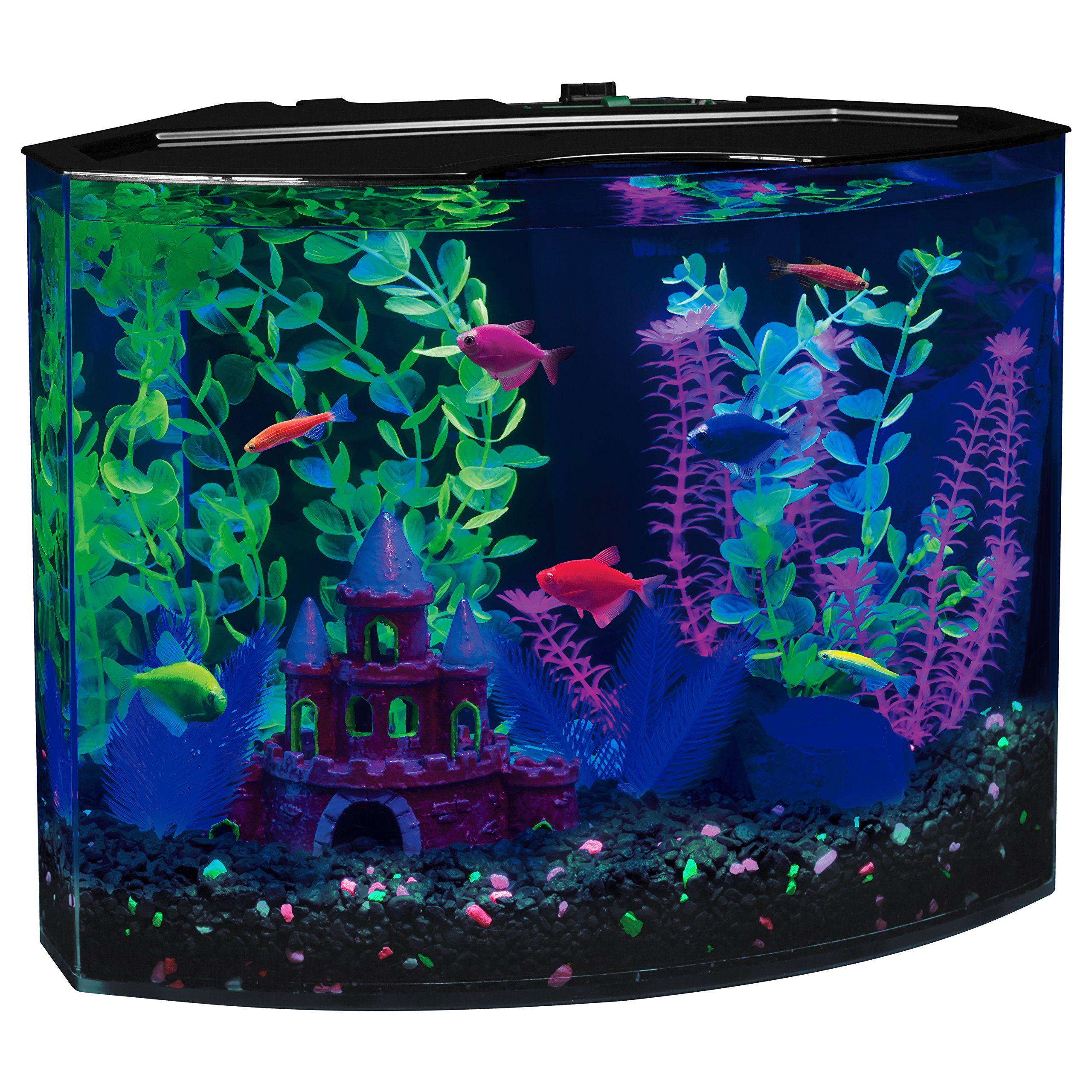 Glofish 29045 Aquarium Kit With Blue Led Light 5 Gallon 5
