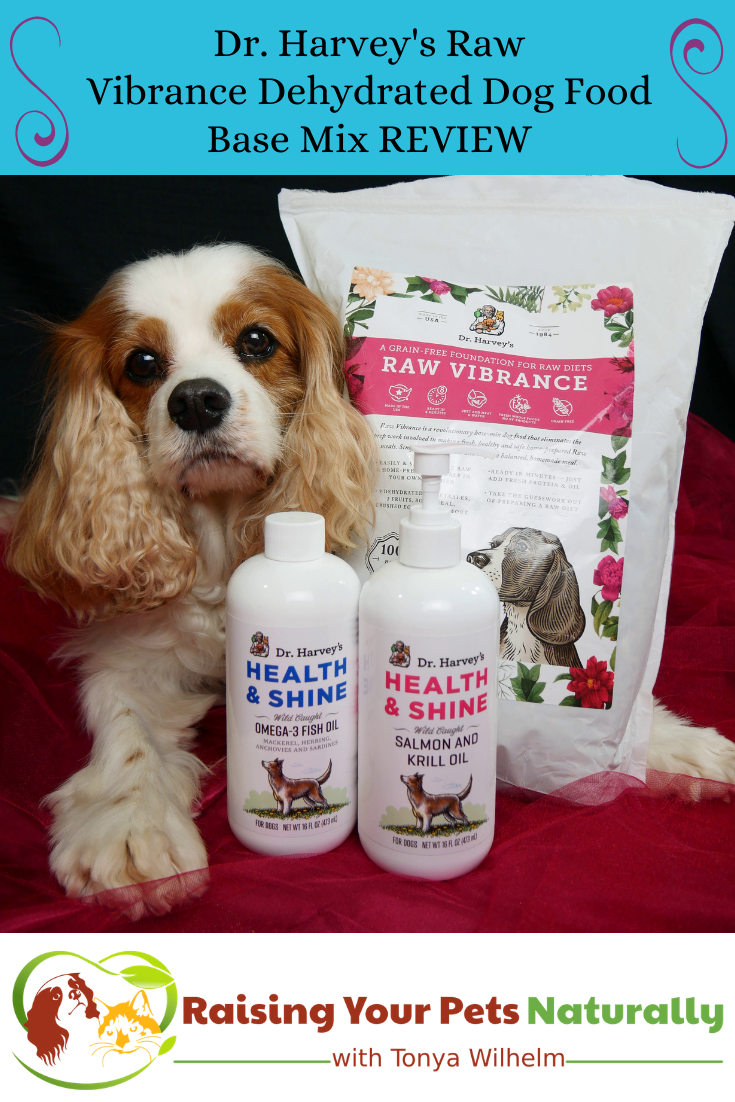 Raw Dog Food Diet Brands Dehydrated Dog Food Raw Dog Food