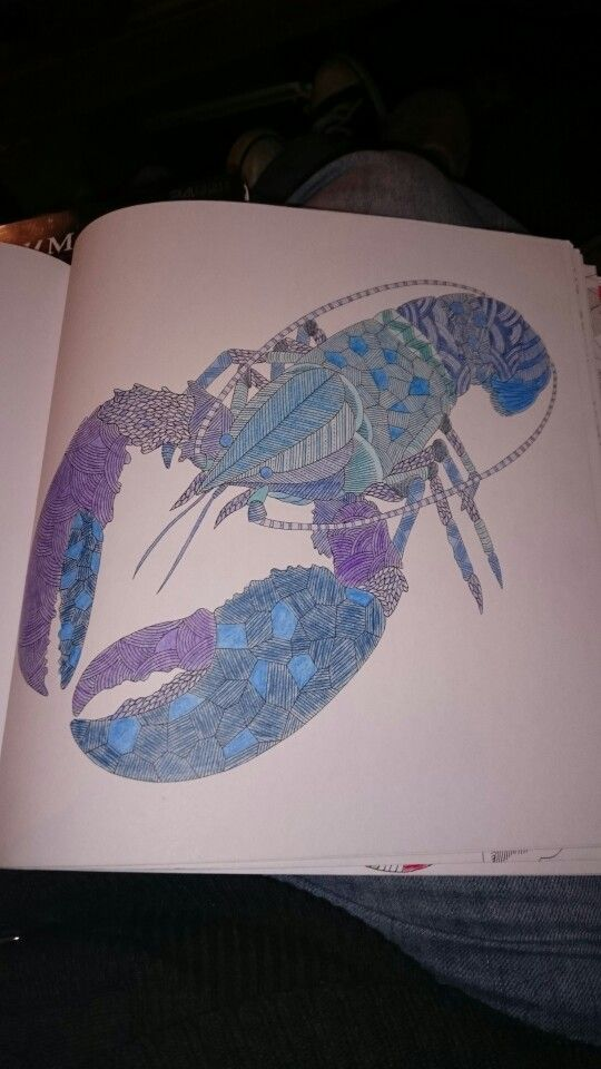 Millie Marotta Animal Kingdom Lobster Ilovetea86