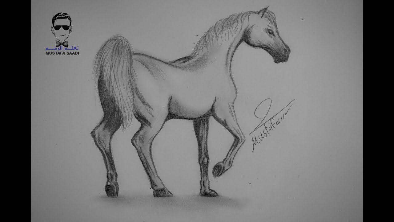 تعلم كيفية رسم حصان بالرصاص مع الخطوات للمبتدئين Youtube Animal Drawings Sketches Art Drawings