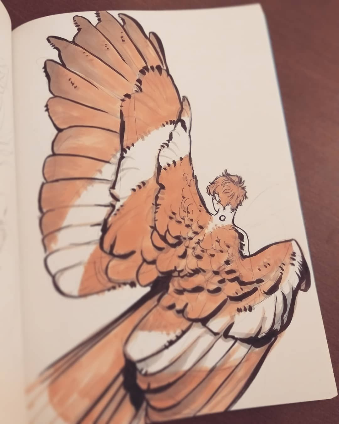 """Laura Pauselli on Instagram: """"Jeremy and his owl wings 💫 #character_design #wings #oc #fulemyocs #fulemyoc_jeremy #sketch #doodle #isia"""""""