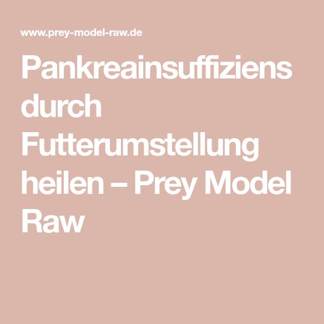 Pankreainsuffiziens Durch Futterumstellung Heilen Prey Model Raw In 2020 Heilen Models