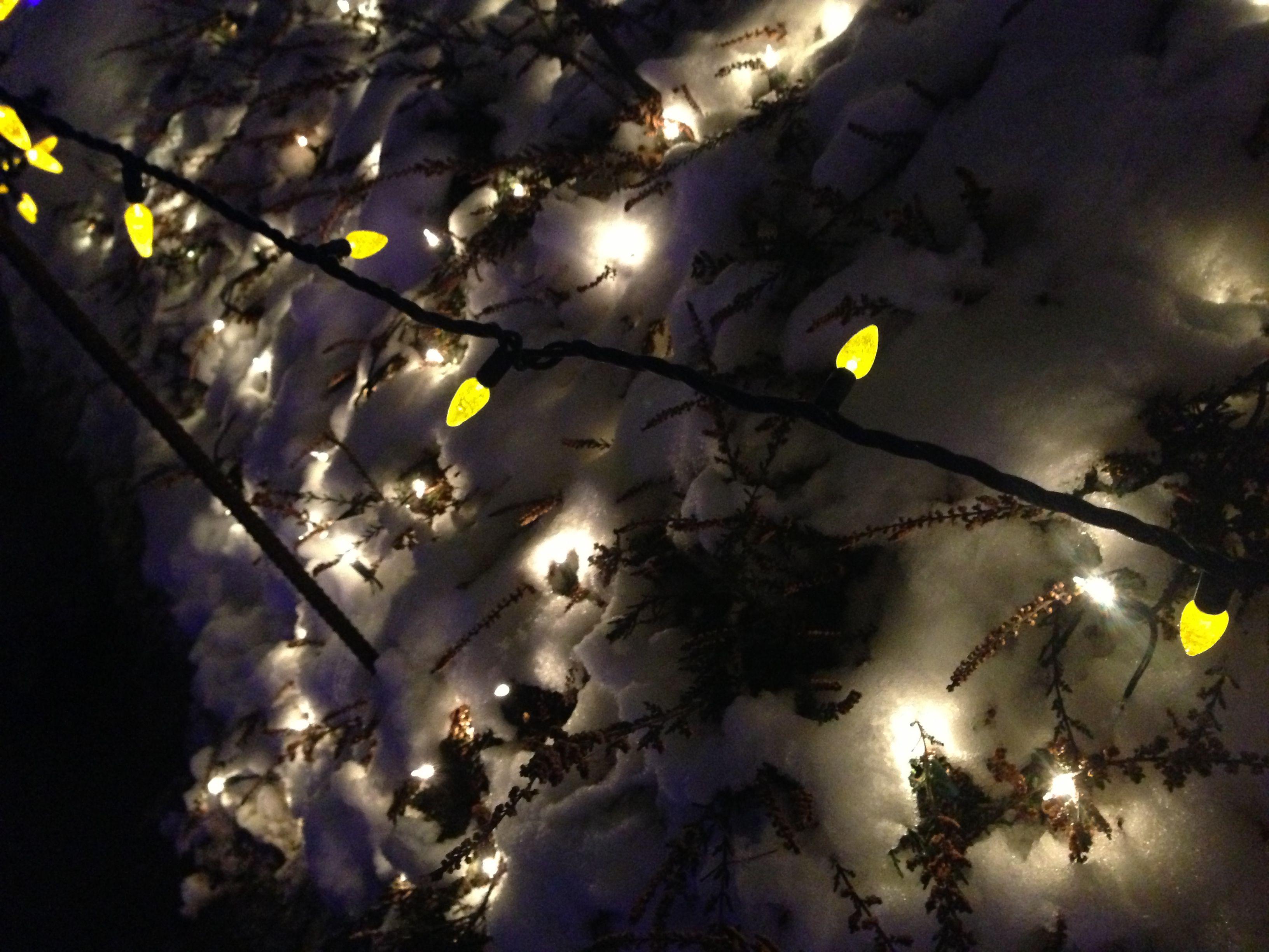 illumination with snow