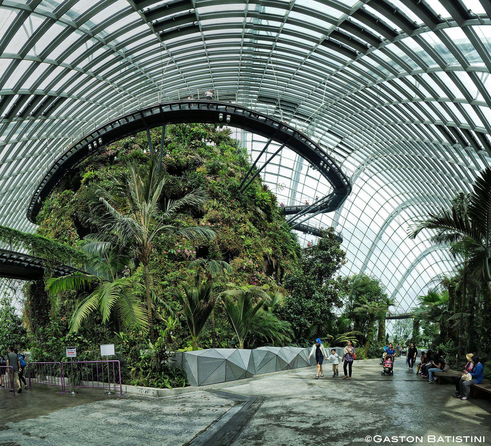 d5c37c4e9e85e652af3bb437a071a530 - Gardens By The Bay Landscape Architect