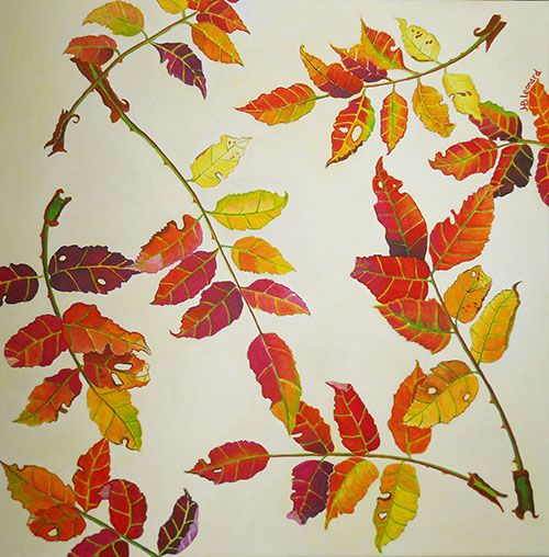 Autumn rose leaves