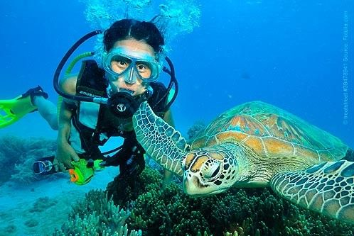 Do you like biology, animals and the ocean? Then you are right - marine biologist job description