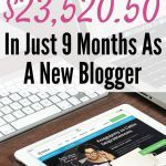7th Blog Income Report: I Made $23,520.50 In 9 Months As A New Blogger