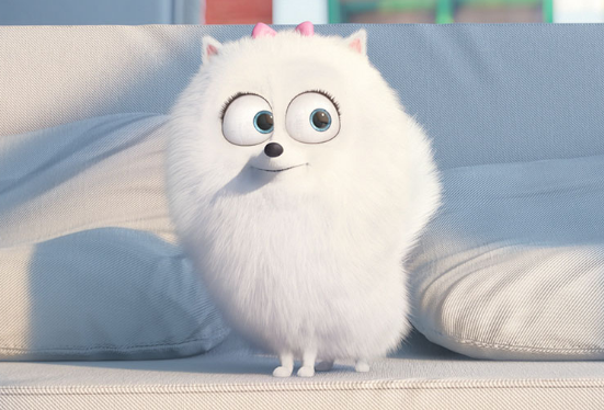 "Which ""Secret Life Of Pets"" Character Are You? Pets"