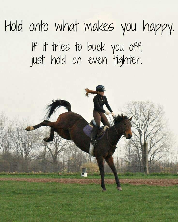 Hold On Bucking Horse Quotessayings Horse Quotes Horses Horse