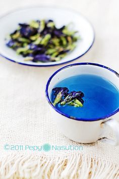 Bunga Telang (Blue Pea Vine or Butterfly Pea), A Natural Blue Food ...